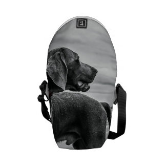 Wonderful Dog Courier Bags
