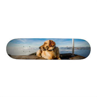 Wonderful Dog Skate Deck