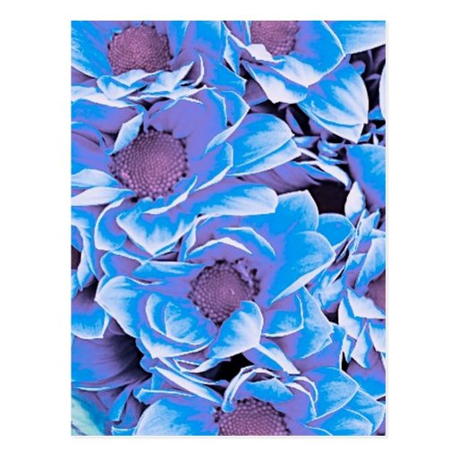 wonderful flowers 08 blue postcards