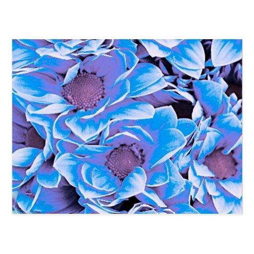 wonderful flowers 08 blue post card