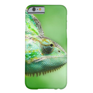 Wonderful Green Reptile Chameleon Barely There iPhone 6 Case