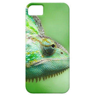 Wonderful Green Reptile Chameleon iPhone 5 Cover