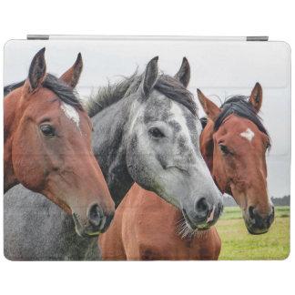 Wonderful Horses Stallion Photography iPad Cover