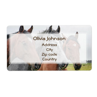 Wonderful Horses Stallion Photography Shipping Label