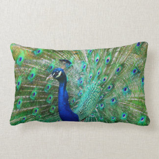 Wonderful  Peacock Pillow