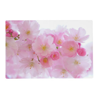 Wonderful Pink Japanese Cherry Blossom Laminated Placemat