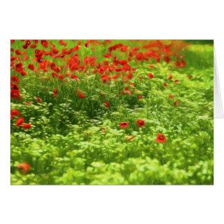 Wonderful poppy flowers V - Wundervolle Mohnblumen Card