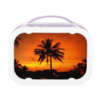 Wonderful Sunset Lunchbox