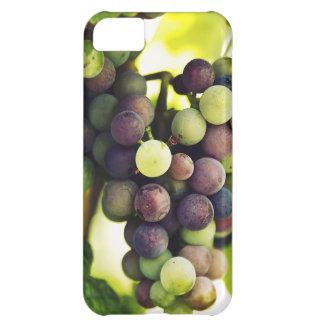 Wonderful Vine Grapes,  Autumn Fall Sun iPhone 5C Cases