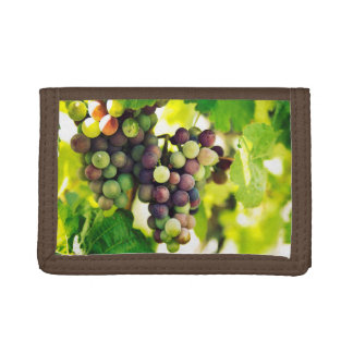 Wonderful Vine Grapes,  Autumn Fall Sun Trifold Wallet