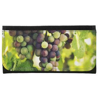 Wonderful Vine Grapes,  Autumn Fall Sun Wallets