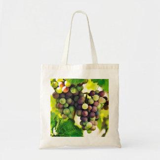 Wonderful Vine Grapes, Nature, Autumn Fall Sun