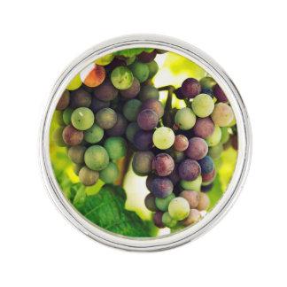 Wonderful Vine Grapes, Nature, Autumn Fall Sun Lapel Pin