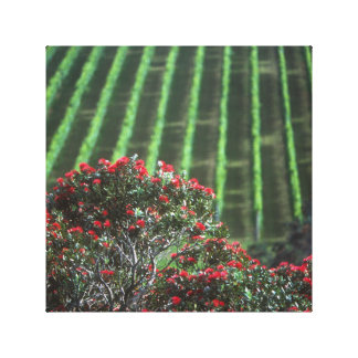 """Wonderful Waiheke"" - Waiheke Vineyard Canvas Print"