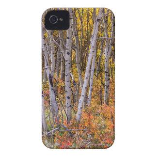 Wonderful Woods Wonderland iPhone 4 Case