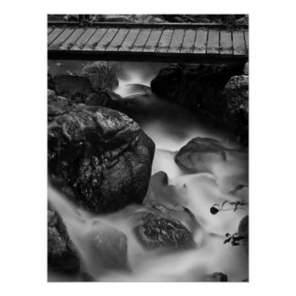 Wood Bridge and Moving Water in the Forest Poster