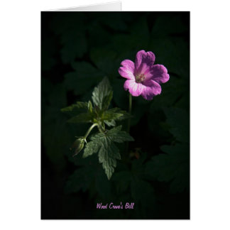 Wood Crane's Bill blank notelet / card