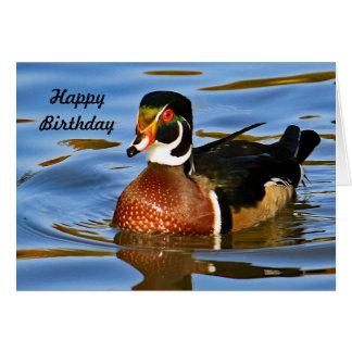 Wood Duck 2221 Birthday Card
