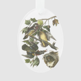 Wood Duck by Audubon Ornament