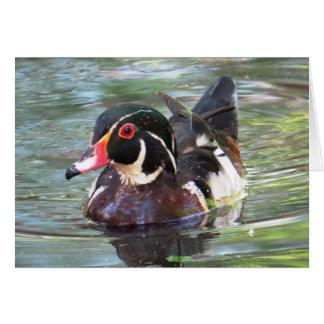 Wood Duck Card