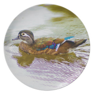 Wood Duck Hen Plate