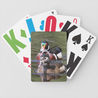 Wood Duck Playing Cards