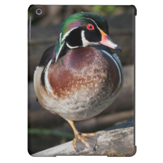 Wood Duck Resting iPad Air Cover