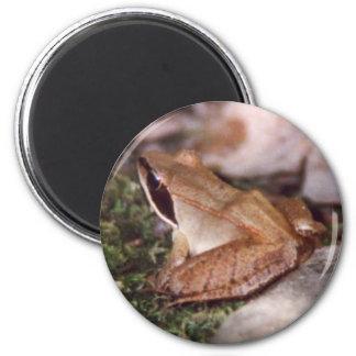 Wood Frog Magnet