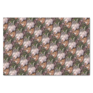 Wood Frog Tissue Paper