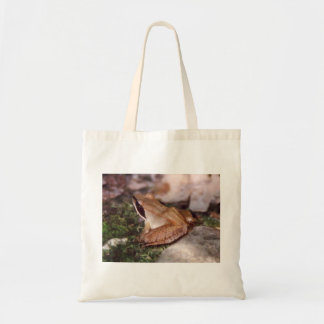 Wood Frog Tote Bag