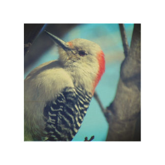 Wood-pecker Wooden Wall Art