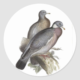 Wood Pigeon Classic Round Sticker