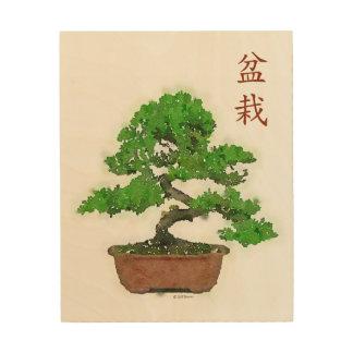 Wood Print: Japanese Bonsai Tree Wood Prints