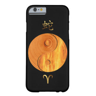 Wood Snake Year and Aries Fire sign case