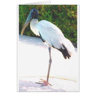 Wood stork in evening wear card