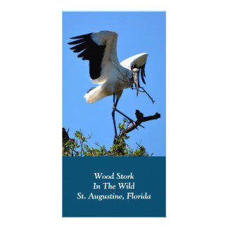 Wood Stork in The Wild Photo Card Template