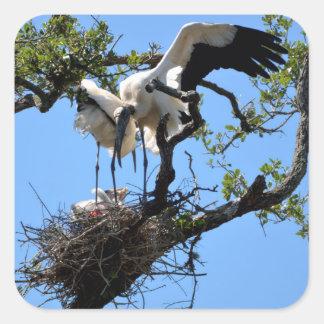 Wood Stork nesting Square Sticker