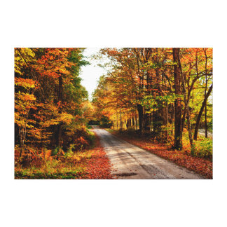 Wood trail with fall foliage canvas print