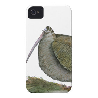 woodcock bird, tony fernandes iPhone 4 Case-Mate case