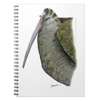 woodcock bird, tony fernandes notebooks