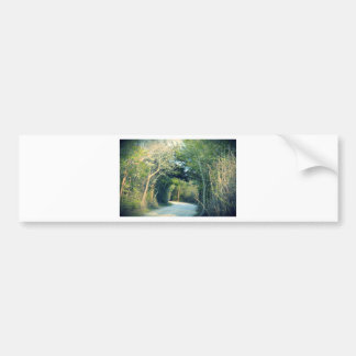 Wooded Path Bumper Sticker