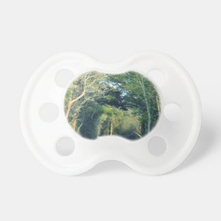 Wooded Path Pacifier