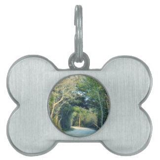Wooded Path Pet ID Tags