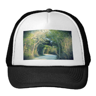 Wooded Path Trucker Hat
