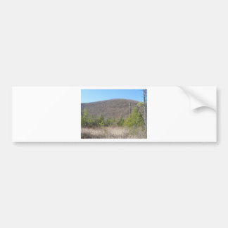 Wooded scenery with blue sky. bumper sticker