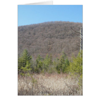 Wooded scenery with blue sky. greeting card