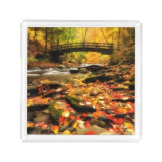 Wooden Bridge and Creek in Fall Perfume Tray