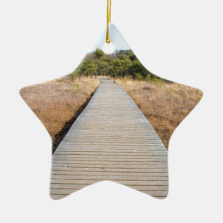 Wooden path in grass and forest winters landscape. ceramic star ornament