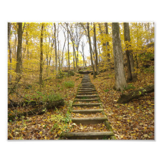 Wooden Stairs in a State Park Photo Print