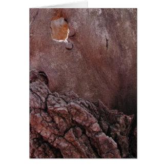 Wooden Tears Card
